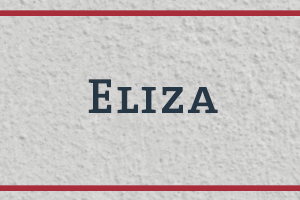 The Naming Project: Eliza