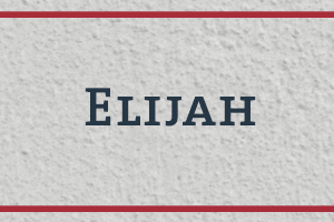 The Naming Project: Elijah