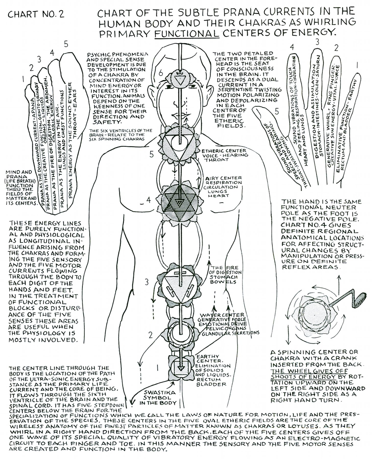 Polarity Therapy Volume 1 Book 2 Chart 02