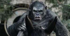 Planet der Affen 2 - Revolution - Szenenbild 2