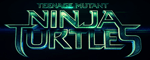 Teenage Mutant Ninja Turtles 3D -Logo