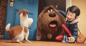 PETS- Szenenbild 1