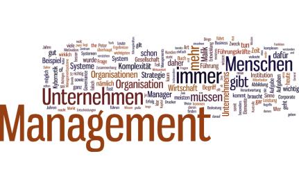 wordle-management_-das-a-und-o-des-han-fredmund-malik