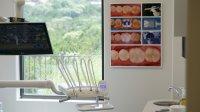 Dental Wall Art by Todd Ehrlich, DDS - Digital Enamel