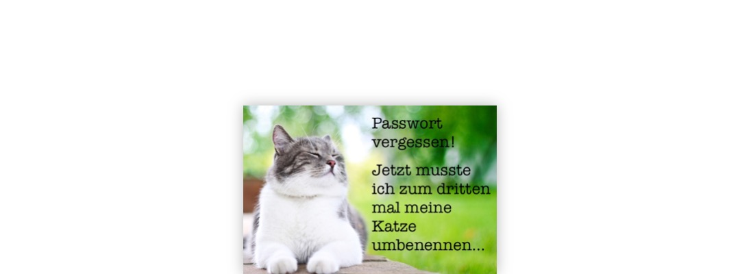 Sicherheit mit 1Password