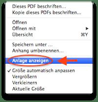 pdf anlage anzeigen