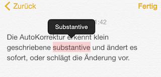 Substantiv Korrektur