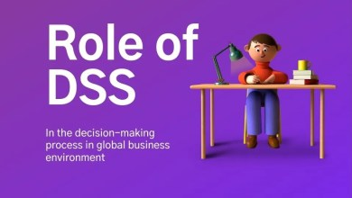 role of dss in decision making process