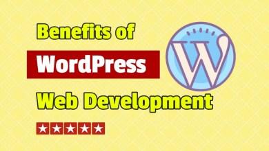 benefits of wordpress web development