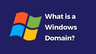 what is a windows domain
