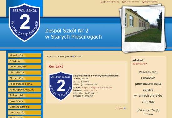projektowanie stron www pieścirogi