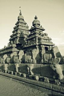 mahabalipuram00008