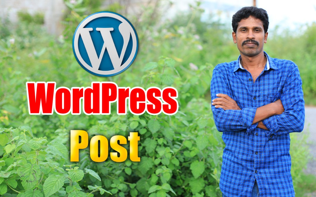 How to create a post in WordPress 2020