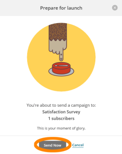Send a new Satisfaction Survey - Step 6