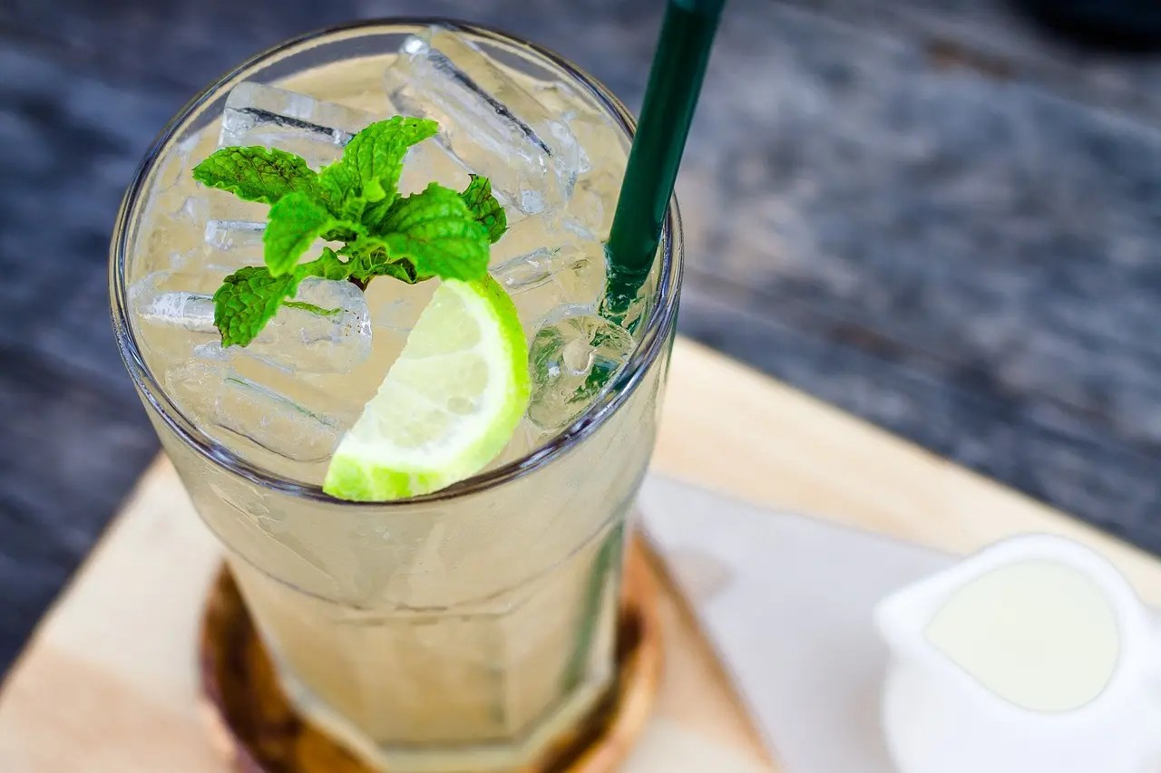 beverage, lemon, mint leaves