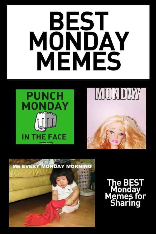 Happy Monday Funny Meme : happy, monday, funny, Monday, Memes, Funny, Start