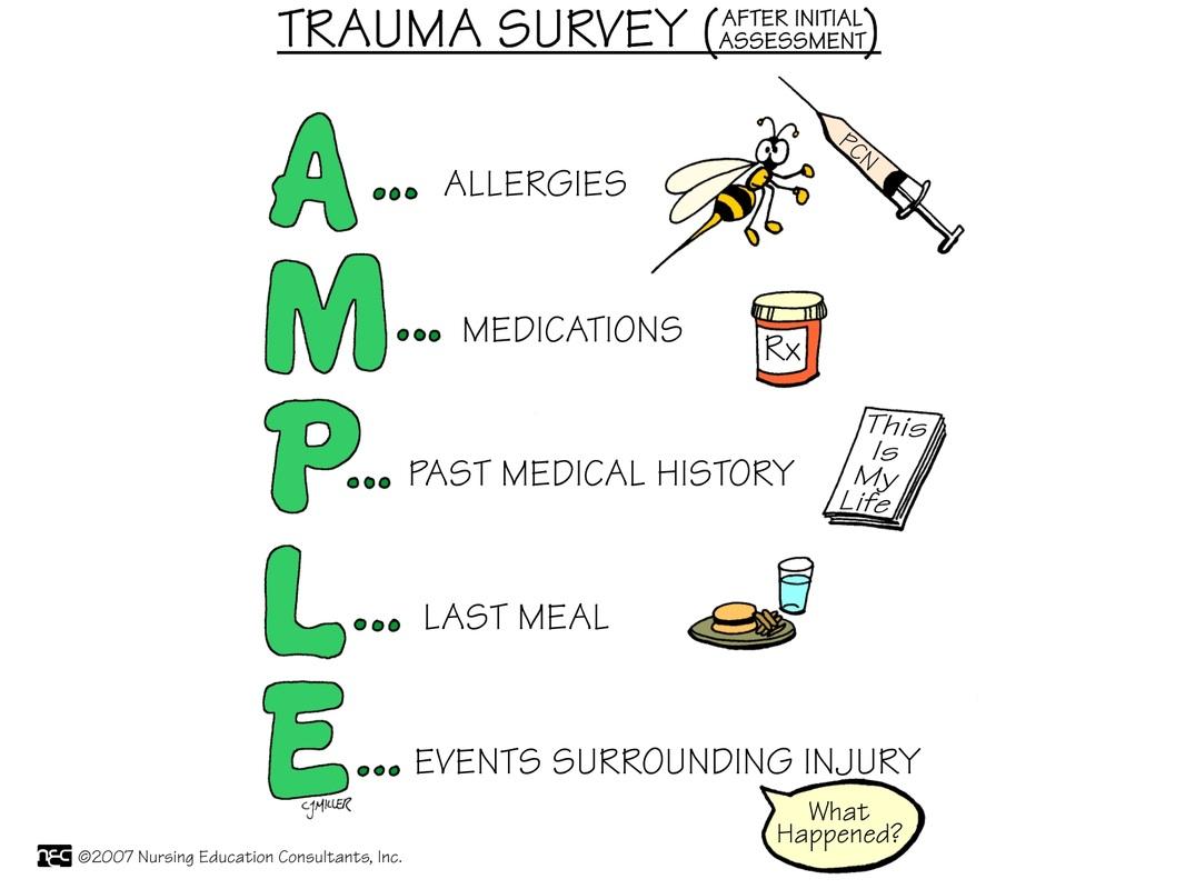 Assessment Picture Mnemonics