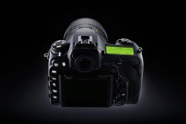Nikon D500 ambience_4