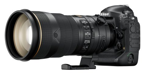 Nikon D4S - With 300mm
