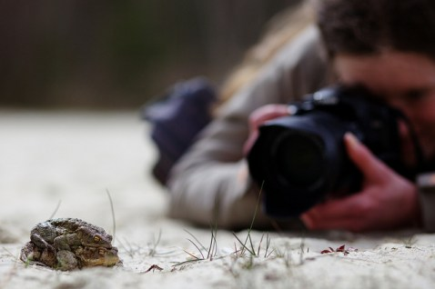 photograpger 1