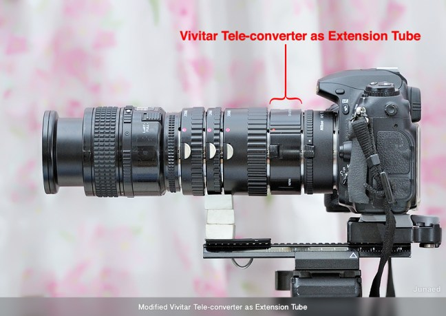 Vivitar Tele-converter as Extension Tube in use