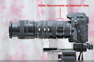 Vivitar Tele-converter as Extension Tube_900pix