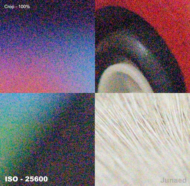 Nikon D810 ISO-25600-Sample