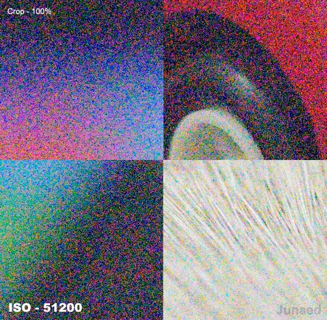Nikon D810 ISO-51200-Sample