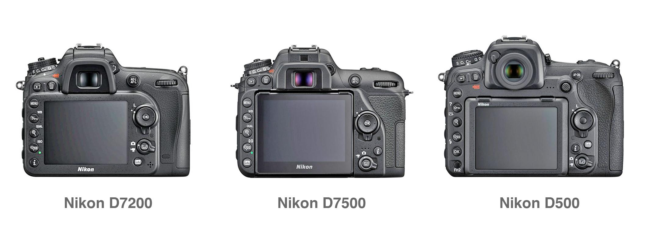 By Photo Congress || Nikon D7200 Vs D500 Autofocus