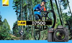 Buffer Capacity Nikon D7500 vs Nikon D7200
