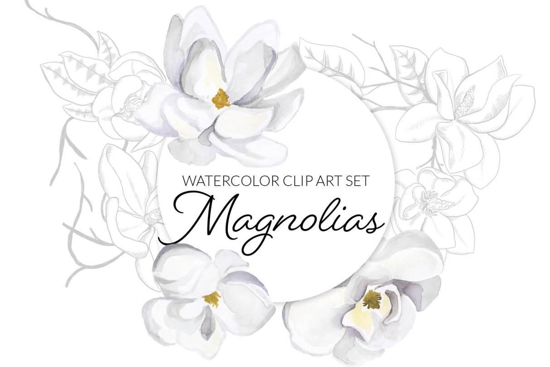 Magnolia Watercolor Flower Clipart,