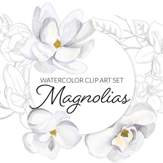 Magnolia Watercolor Flower Clipart,