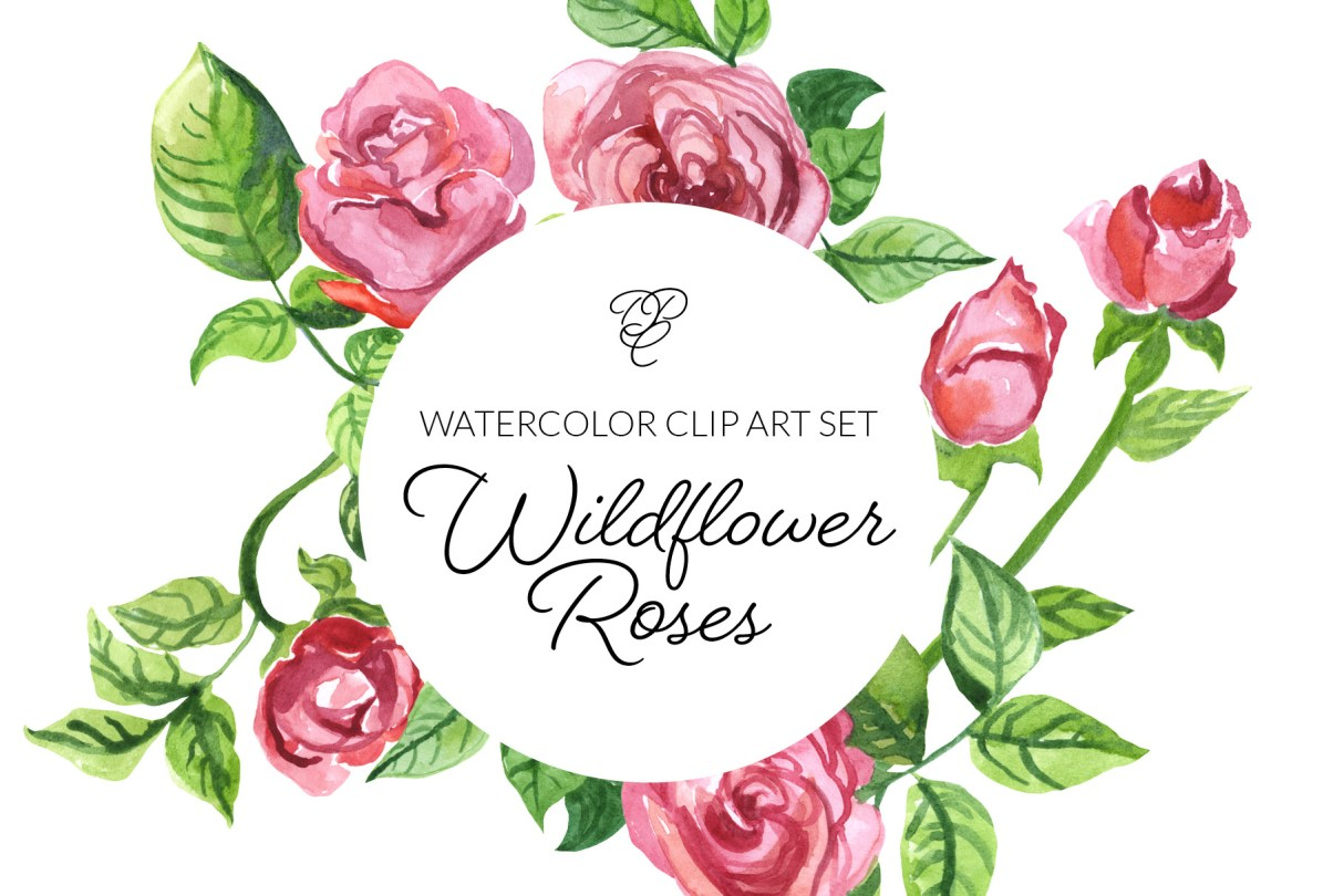Watercolor Wildflower Roses Clipart