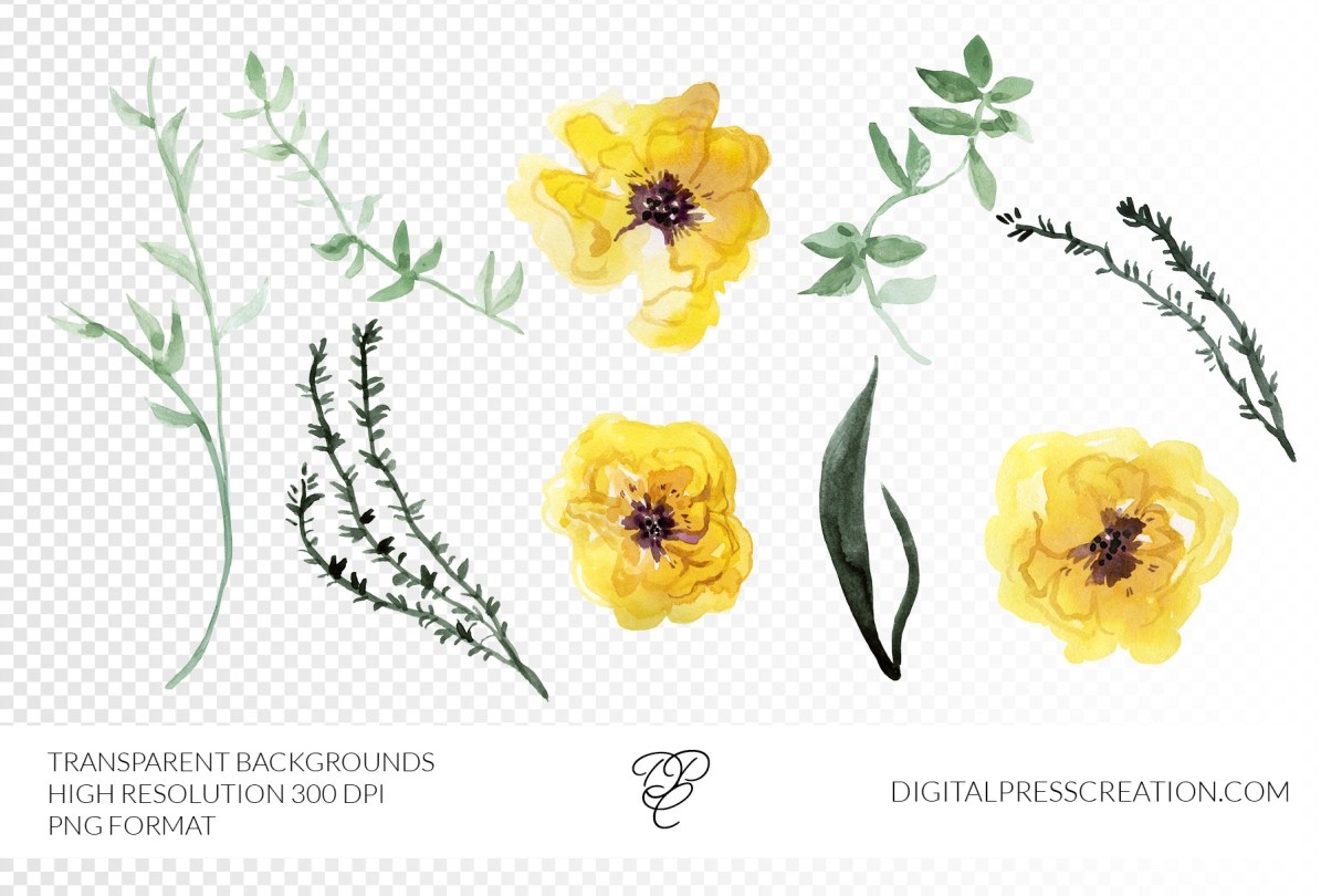 Transparent Yellow Peonies PNGs
