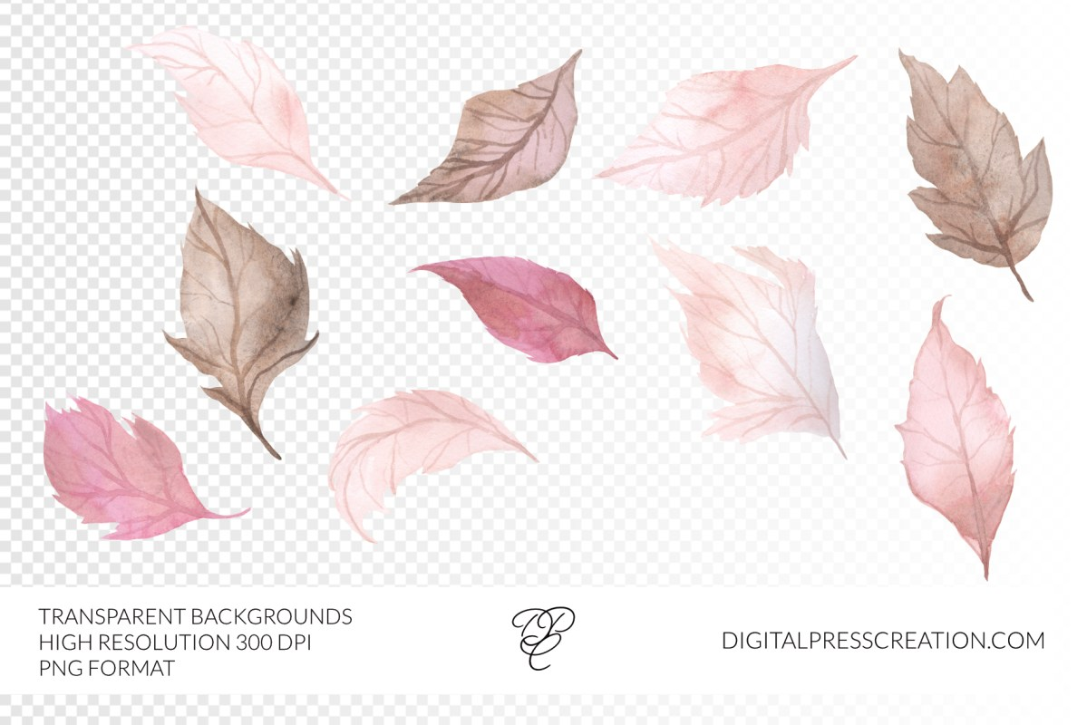 Watercolor Blush Fall Leaves Clipart, leaves transparency