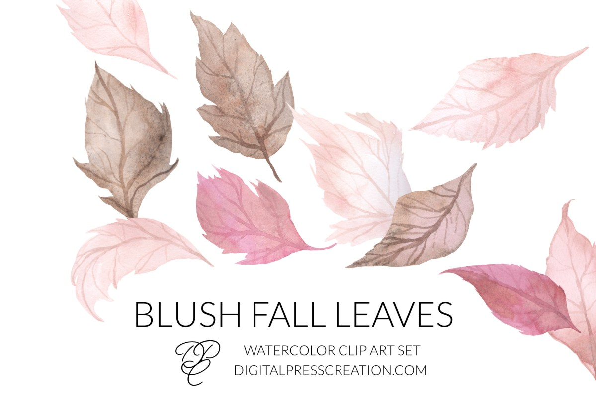 Blush Fall Leaves clipart leaves