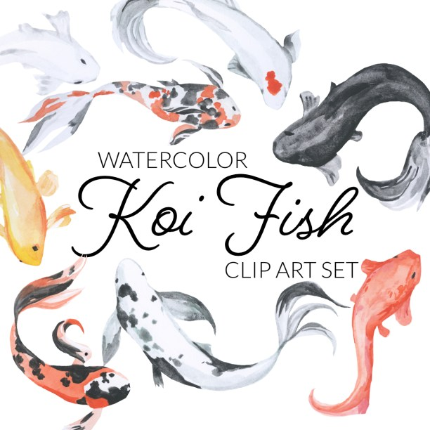 watercolor koi fish clipart, digital japanese fish elements, watercolor illustration