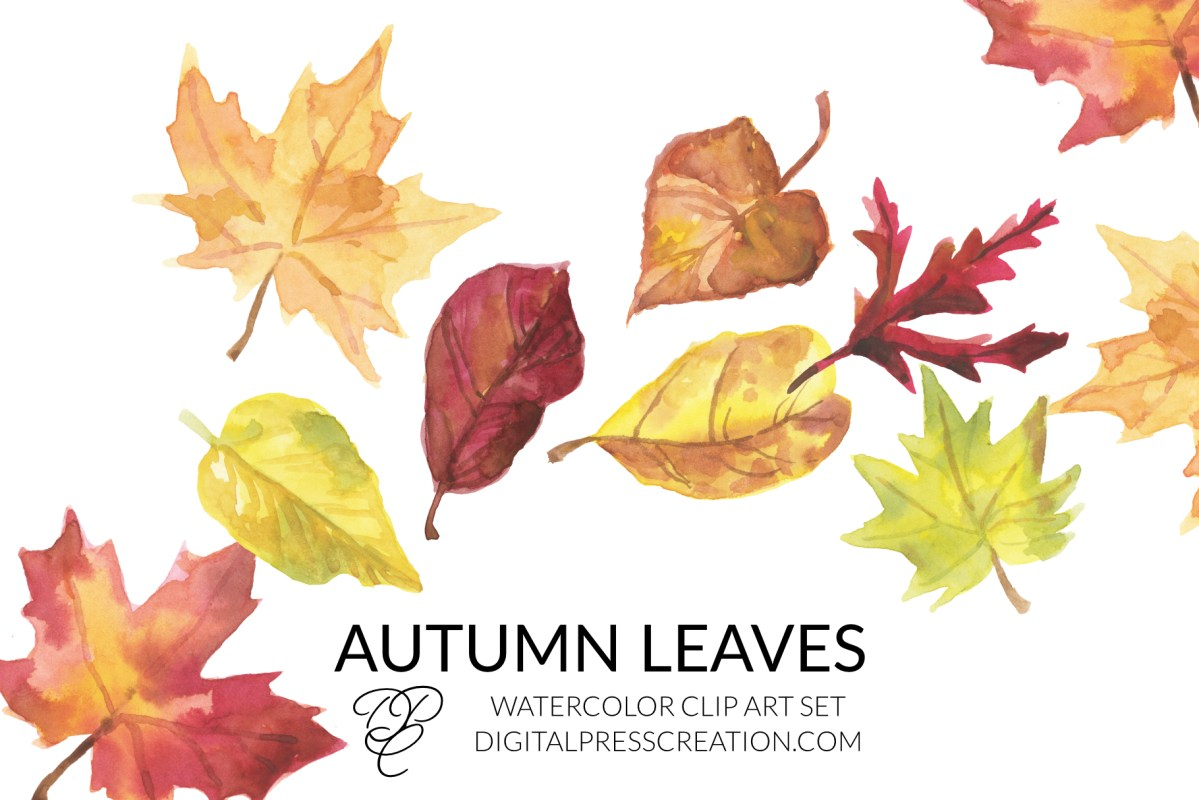 Autumn Leaves Clipart, fall leaf clip art, watercolor fall illustration
