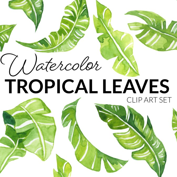 Watercolor Tropical leaves, leaves of banana trees created with green watercolor paint