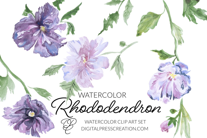 Digital watercolor Rhododendron clip art illustration