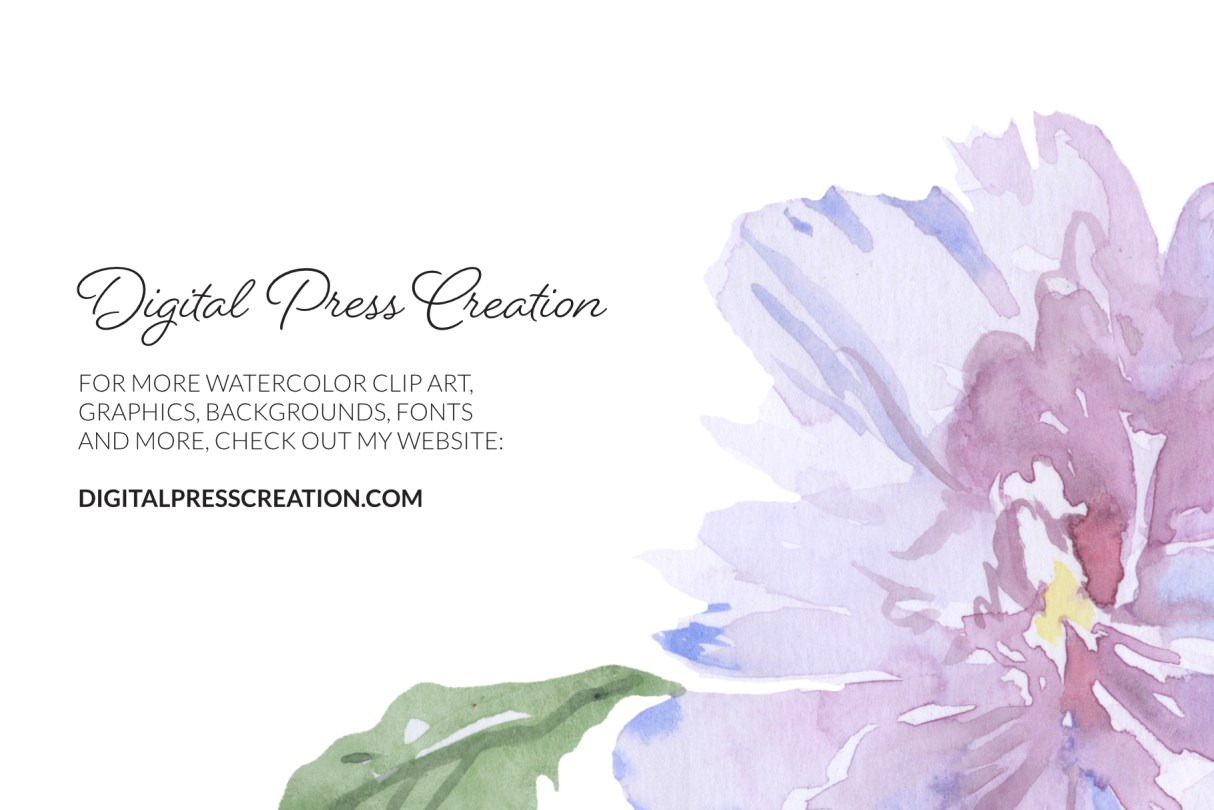Watercolor closeup rhododendron transparent background quality check digital