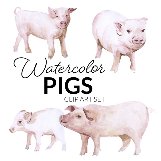Watercolor Pigs Clipart Header Image