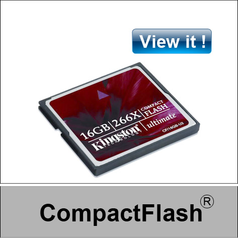 recovery Compact Flash card