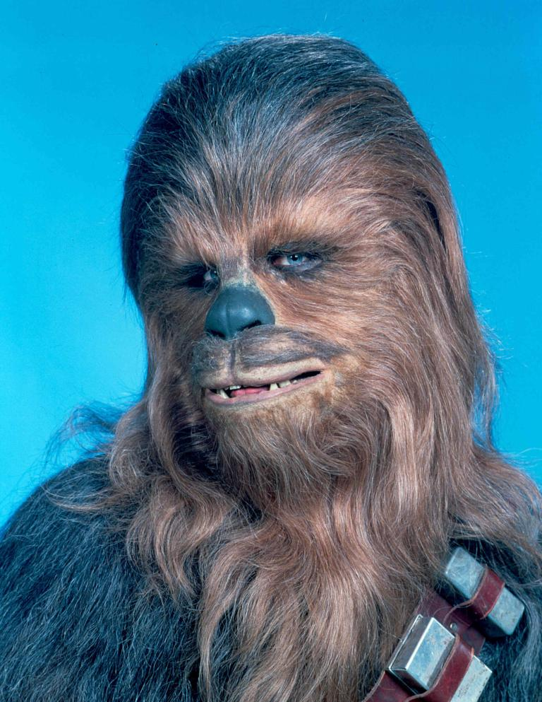 Image result for chewbacca
