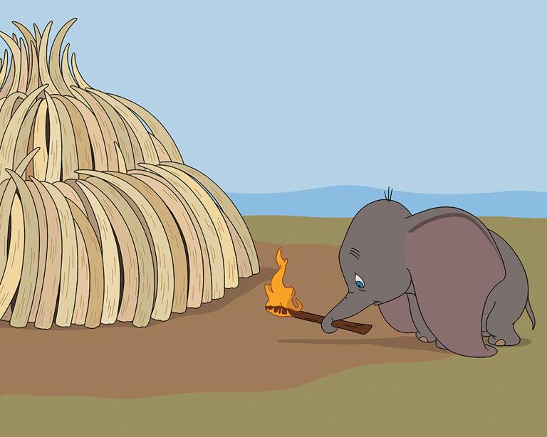 Tom Ward, Disney Dumbo