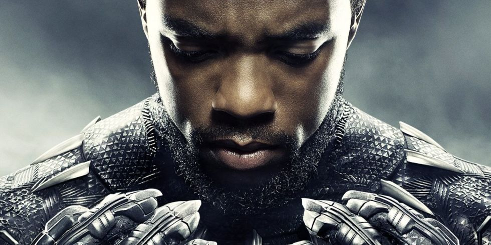 Image result for black panther'