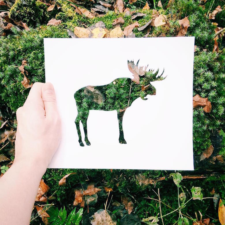 Russian Artist Uses Beautiful Backdrops Of Nature To Fill Paper CutOuts Of Animals