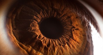'Your Beautiful Eyes' – Amazing Close-Up Photos Of Human Eyes By Suren Manvelyan