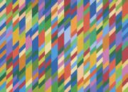 Nataraja 1993 Bridget Riley born 1931 Purchased 1994 http://www.tate.org.uk/art/work/T06859