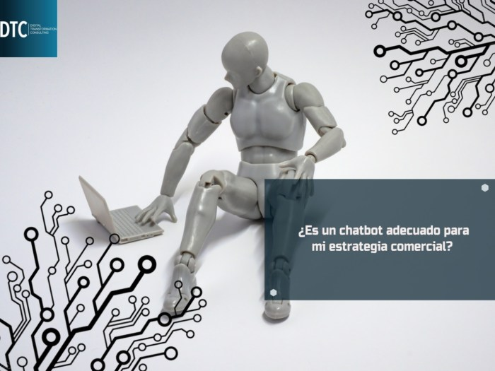 CHATBOT HUBSPOT CON DTC